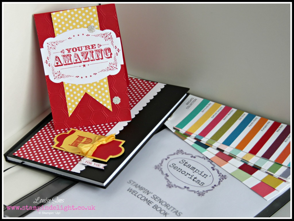 Stampin' Up Team Pack